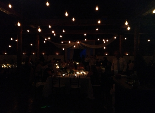 Edison bulb lights for Esther and Phils wedding